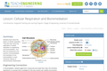 Cellular Respiration and Bioremediation