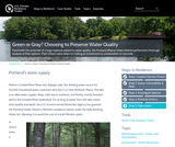 Green or Gray? Choosing to Preserve Water Quality