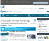 Animals at the Extremes: Polar Biology