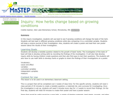 Inquiry: How Herbs Change Based on Growing Conditions