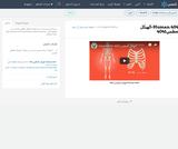 Human   4041-الهيكل العظمي4041