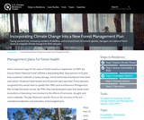 Incorporating Climate Change Into a New Forest Management Plan