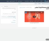 Human   4041 الهيكل العظمي للانسان