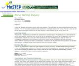 Brine Shrimp Inquiry