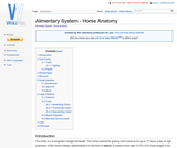 Alimentary System - Horse Anatomy